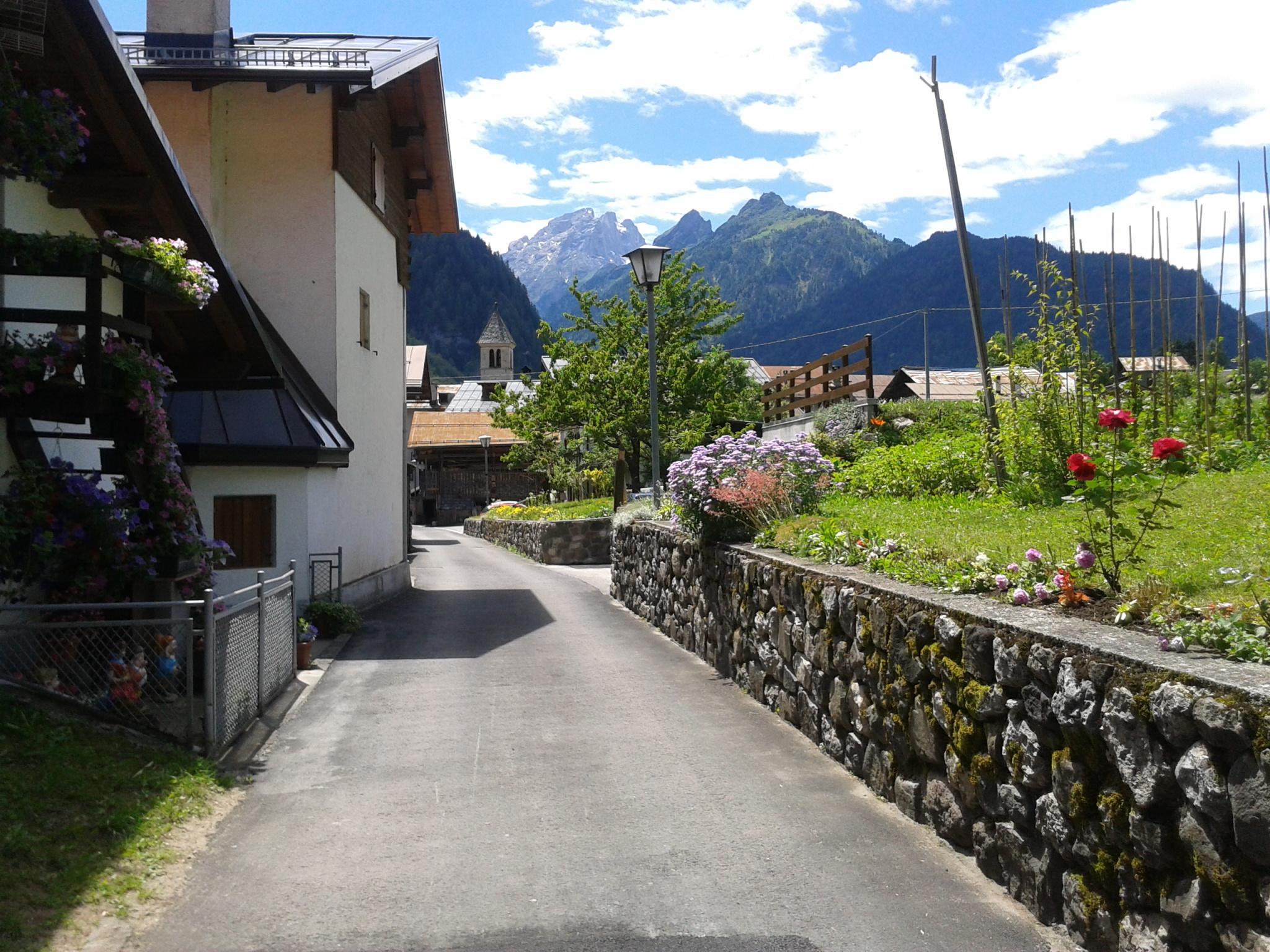 Dolomites July 2011 029