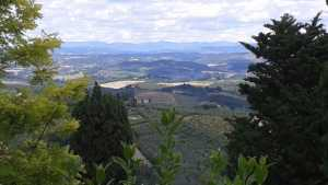 From my travels through Tuscany, Italy (near Greve in Chianti)